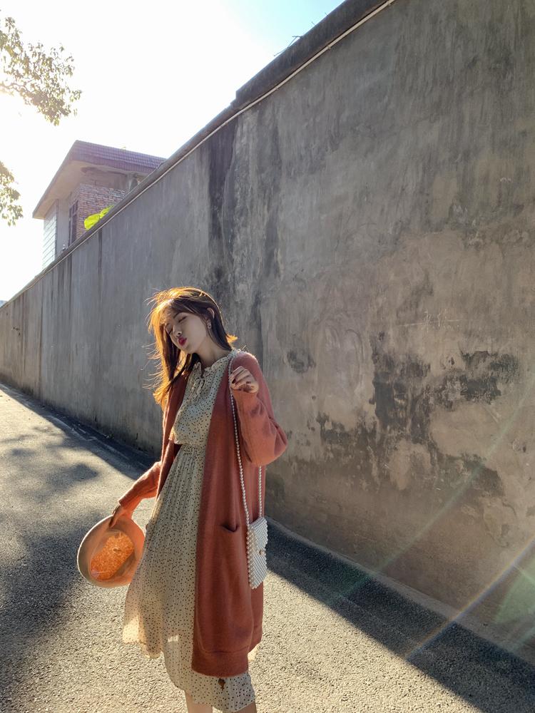 韓国 ファッション ワンピース 春 夏 秋 カジュアル PTXJ534  シアー シフォン スタンドカラー プリーツ オルチャン シンプル 定番 セレカジの写真13枚目